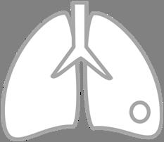 Solitary Pulmonary Nodule Calculator